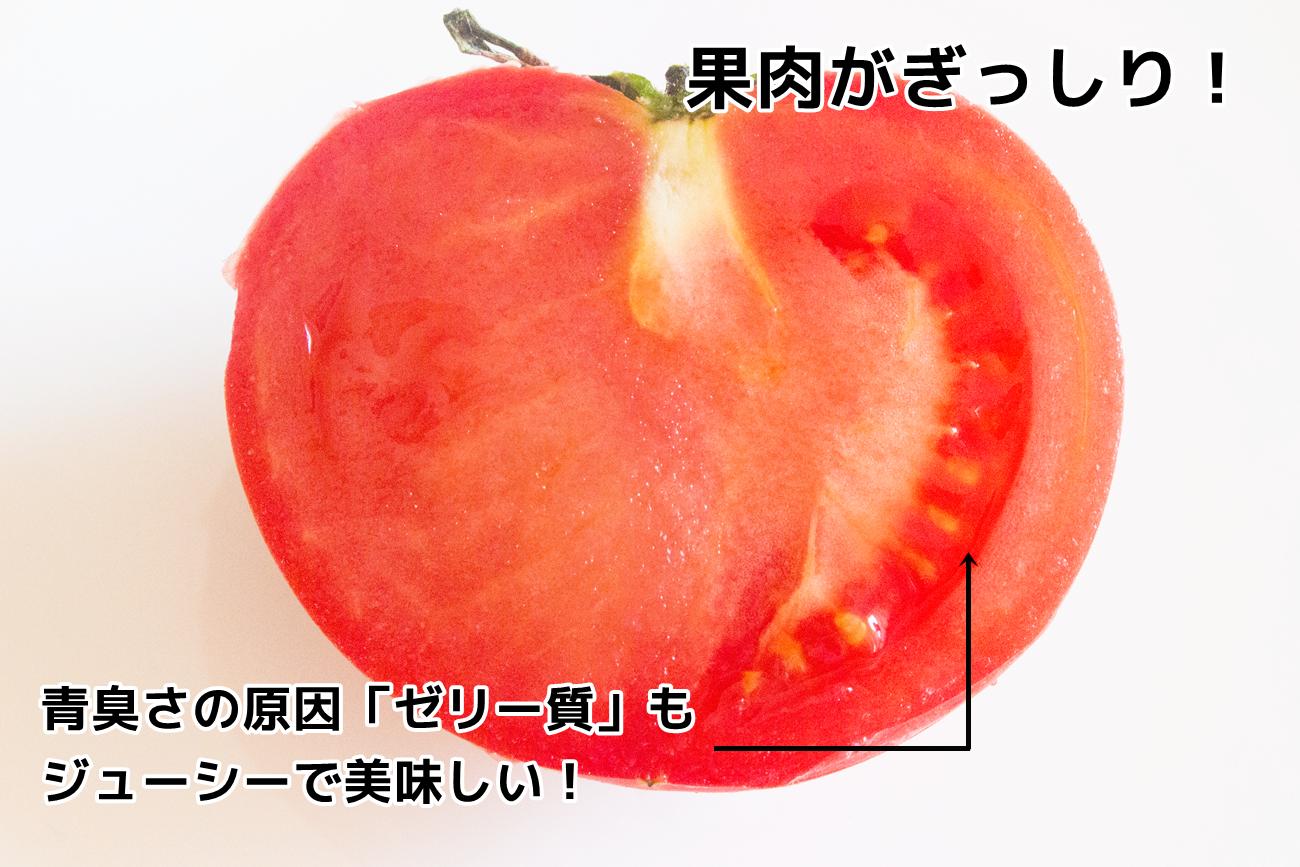 実が均質で果肉ギッシリ。ゼリー質の部分もジューシーで美味しいんですよ。