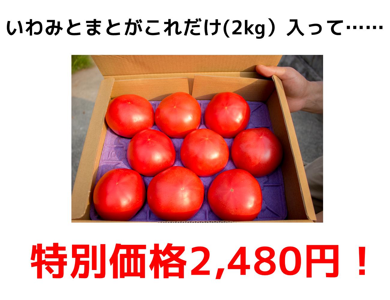 いわみとまとが2kg入って、通販特別価格2480円