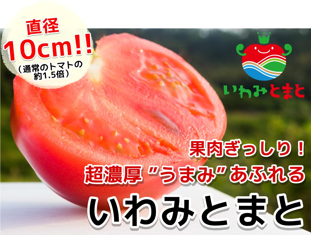 """【トマト通販】果肉ぎっしり!超濃厚""""うまみ""""あふれる「いわみとまと」"""