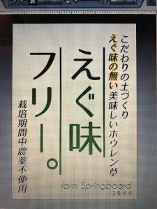 ファームスプリングボードほうれん草ポップ1