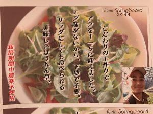 ファームスプリングボードほうれん草ポップ2