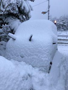 鳥取大雪1