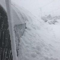 鳥取大雪ハウス2
