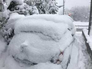 鳥取大雪3