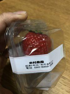 鳥取新品種イチゴとっておき3