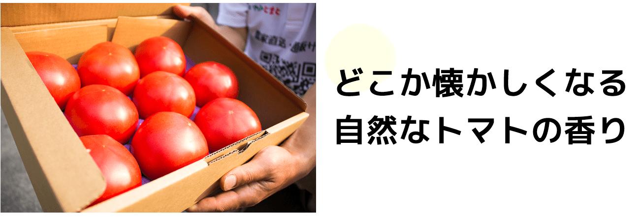 自然なトマトの香りが楽しめます